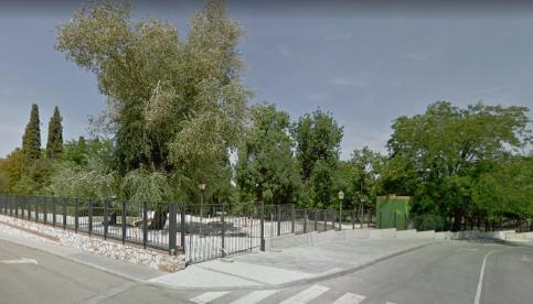 Cierran los parques de la capital por riesgo de caída de ramas debido a los fuertes vientos