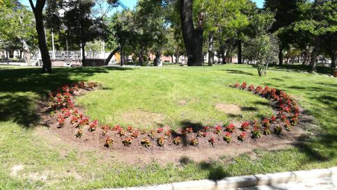 Guadalajara se pone guapa con 30.000 ejemplares de clavel y vinca