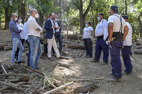 Ya hay 97 personas trabajando en Guadalajara gracias al Plan de Empleo