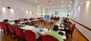 El Pleno aprueba dar la medalla de oro de la ciudad a toda la comunidad educativa